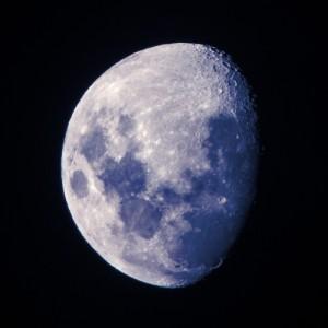 blue-moon-tb